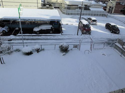 1月20日の雪